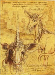 unicornis--7