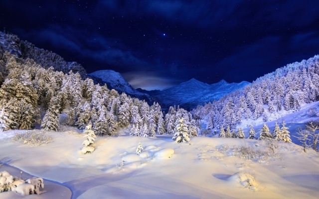 new yearimage_free winter wallpaper