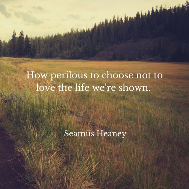 How perilous to choose not to love the life we're shown.